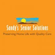 Sandy'€™s Senior Solutions - 29.08.13