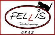 Fellis, mobile Haustierbetreuung, Graz - 06.02.14