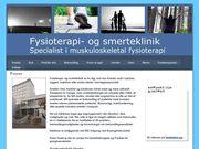 Fysioterapi- og Smerteklinik - 25.11.13