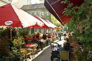 Cafe Strozzi - 11.12.13